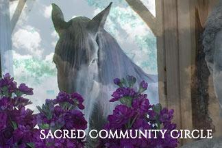 Sacred Circle horse