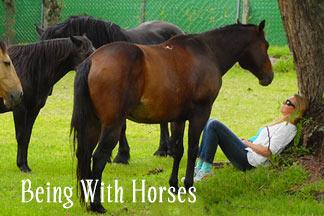 Kerri Lake Being With Horses